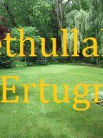 Fethullah