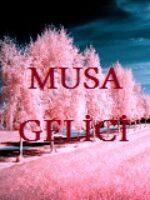 Musa Gelici