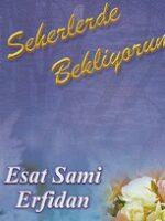 Esat Sami Erfidan