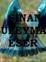 Sinan Süleyman Eser
