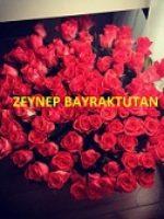 Zeynep Bayraktutan